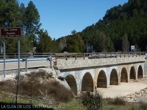 puente_rio_lobos